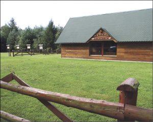 Borowa Chata to placówka edukacyjna, w której odbywają się zajecia dla dzieci, ale również obiekt rekreacyjny, który można wynająć, np. na imprezy.