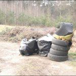 Śmieci i odpady często trafiają do lasu.